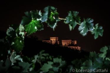 Vista sul Castello di Torrechiara dai vigneti Carra di Casatico