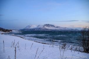 Paesaggi Artici