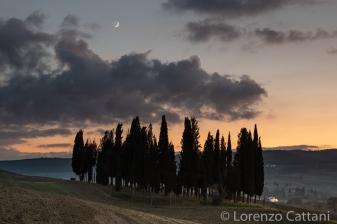 Il Boschetto dei Cipressi e la falce di luna crescente
