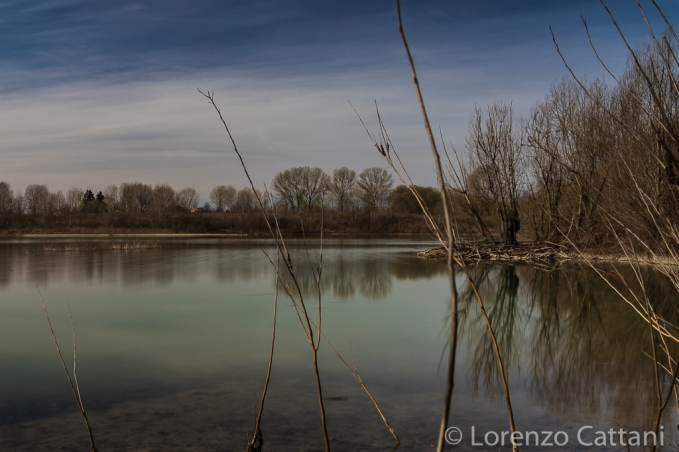 La Parma morta: il lago di fitodepurazione