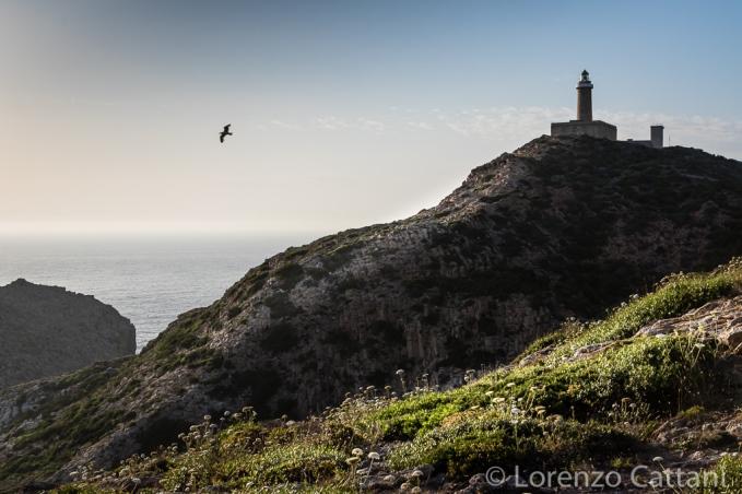 Faro di Capo Sandalo