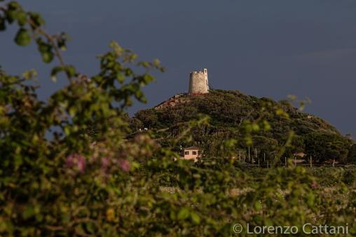 Torre Chia